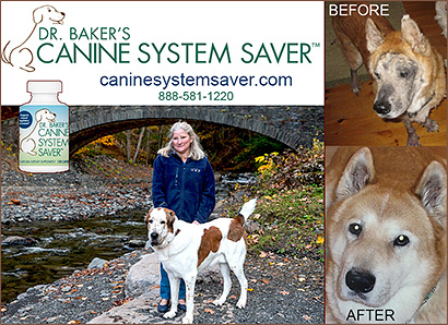 Dog Vitamins by Dr. Bakers Canine System Saver