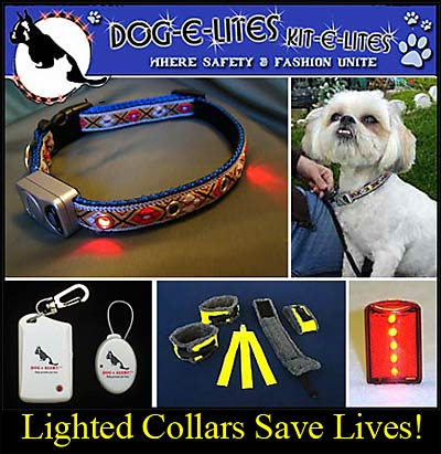 Canine Safety Reflective Products By Dog e Lites