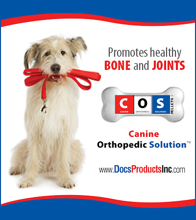 Canine Orthopedic Solution Bone and Joint Supplements for DOgs.