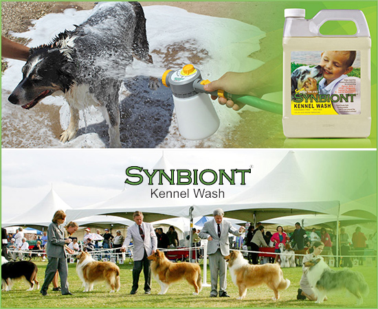 Synbiont Dog Kennel Wash