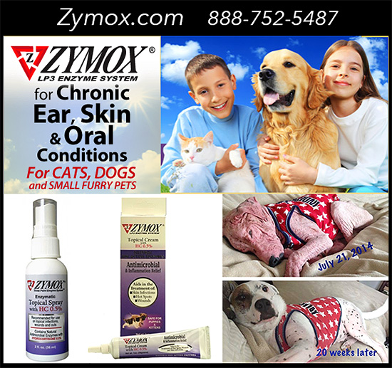 Zymox 174 Topical Spray Or Cream For Hot Spots
