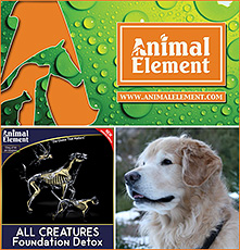 Animal Element Canine Detoxification Supplements