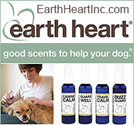 Aroma Therapy for Dogs